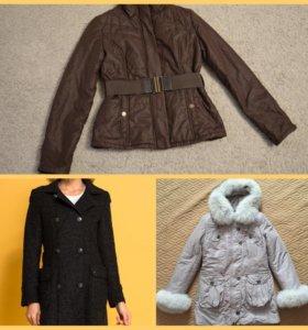 Куртки,пальто женское