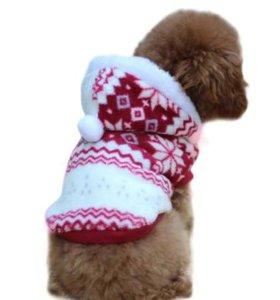 Одежка для собачки