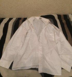 Рубашка оригинал malip