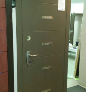 Дверь металлическая Pandoor titan