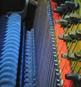 Пианино Циммерман