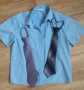 Рубашка с галстуками