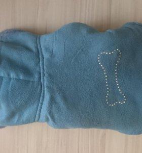 Одежда для собаки зима, s