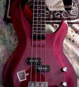 Бас-гитара Aria + утеплённый чехол