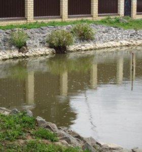 Копка прудов