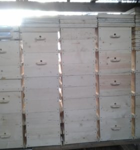 Пчелиные ульи ( Рут- Дадан)