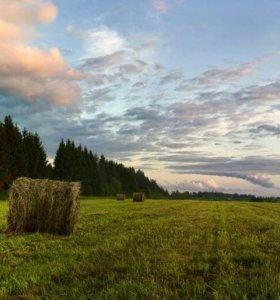 2 га земли сельхоз.назначения