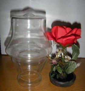 Роза в воде в виде лампы