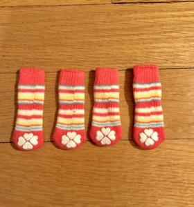 Носочки для мини собачки