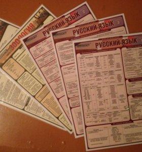 Основы зоологии и русского языка