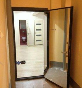 Дверь металлическая входная с зеркалом