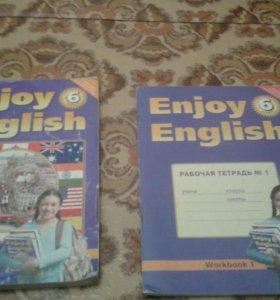 Книга английского языка и его рабочая тетрадь