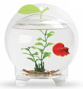 Настенный акриловый аквариум