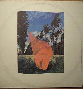 Pink Floyd-Жаль,что тебя здесь нет-пластинка винил