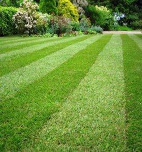 Уход, стрижка газона, аэрация, покос травы
