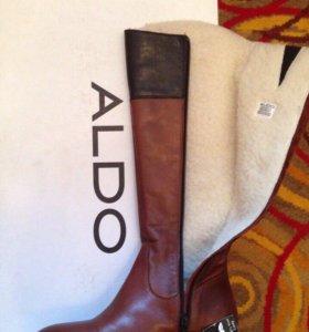 Зимние сапоги Aldo