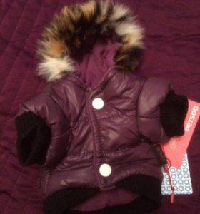 Новая куртка для мини собак XS