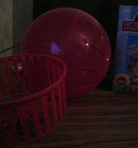 Для хомяков-колесо, корм, шар для прогулок.