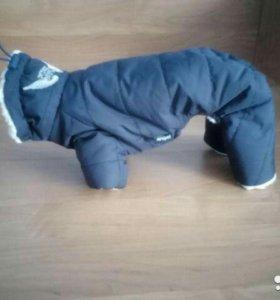 Зимний комбинезон на собачку
