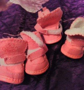 Ботинки для собачек.размер3
