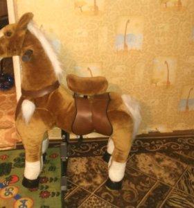 Лошадь 🐴 которая ездит по земле и дома