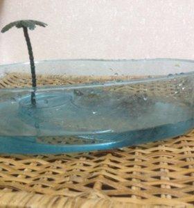 Красноухие черепахи 2 шт. с аквариумом