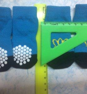 Носочки для мелких собак