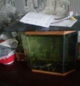 Аквариум .20-25 литров
