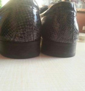 Мужские туфли Dino Ricci
