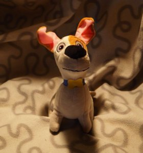 Пёс Макс