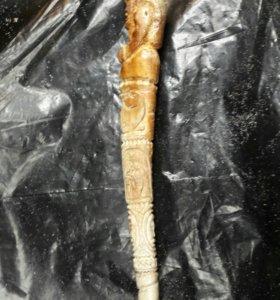 Бакулюм моржа