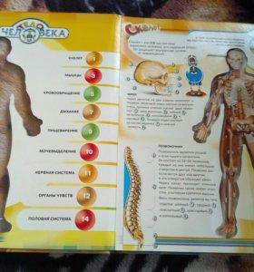 Книга тело человекп