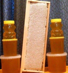 Мёд местный