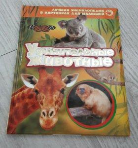 """Книжка """" Удивительные животные"""""""