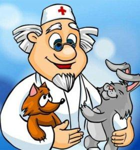 Ветеринарный врач тамбов