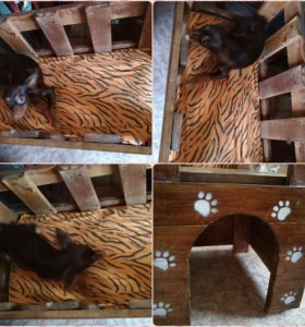 Уголок для собаки или кошки