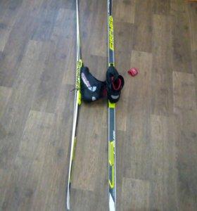Беговые лыжи Ficher