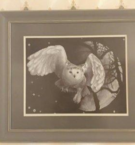 Белая сова.