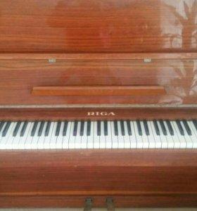 Пианино  RIGA