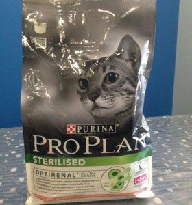 Корм для кошки  Pro Plan