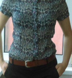 Блуза женская Zolla, S (42-44)