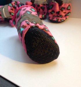 Обувь для собак мелких пород 89207199992