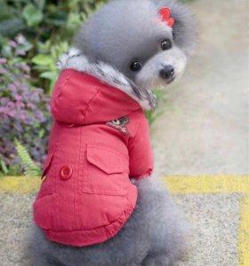 Тёплая куртка для небольшой собаки