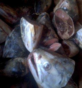 Рыбный деликатес для животных