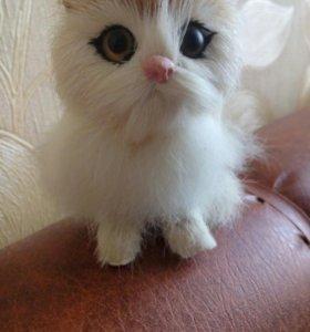 Маленькая кошечка, новая и красивенькая.