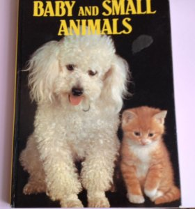 "Книга ""Baby and small animals"