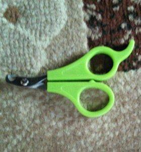 Ножницы для маленьких собачек