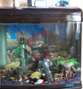 аквариум jebo r352