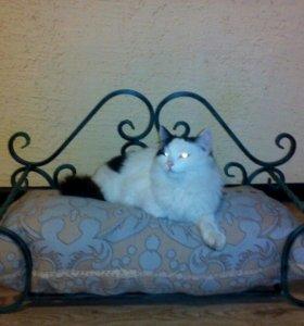 Диванчик для кошечки или собачки