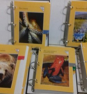 Огромная красочная энциклопедия животных